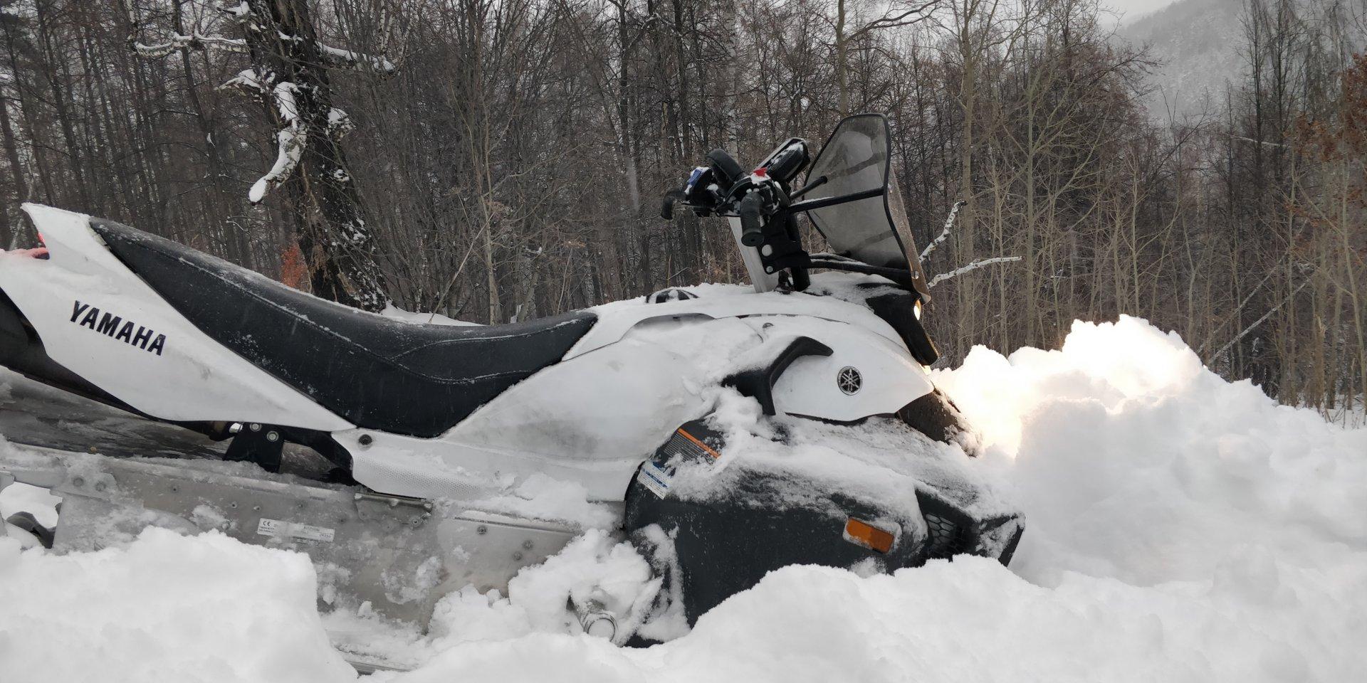 Снегоход динго хуйня